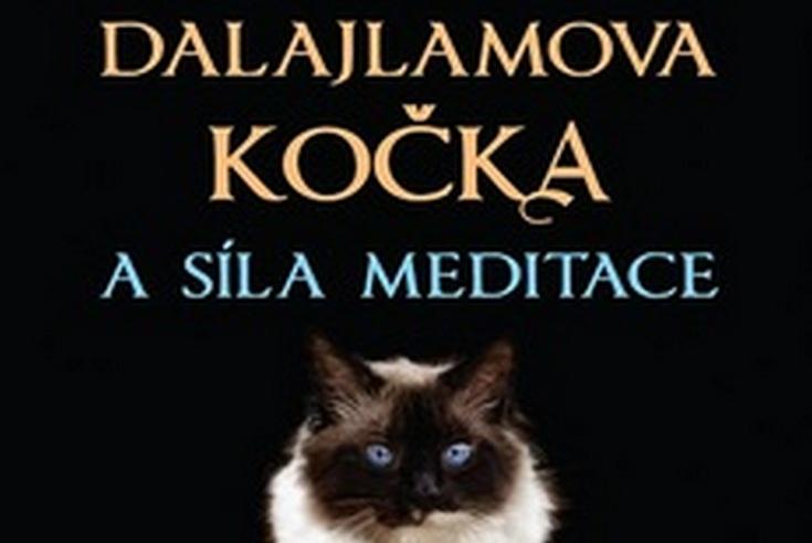 Vyhrajte knihu Dalajlamova kočka a síla meditace - www.klubknihomolu.cz