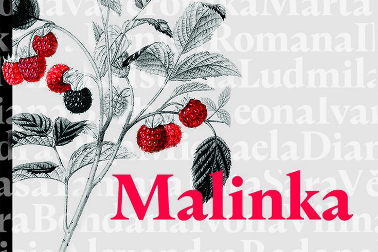 Vyhrajte dvě knihy Malinka - www.klubknihomolu.cz