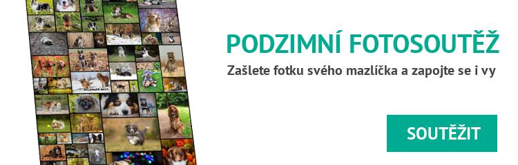velká podzimní fotosoutěž - www.propacky.cz