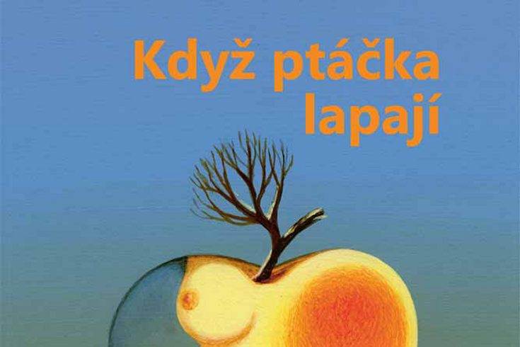 Vyhrajte dvě knihy Když ptáčka lapají - www.klubknihomolu.cz