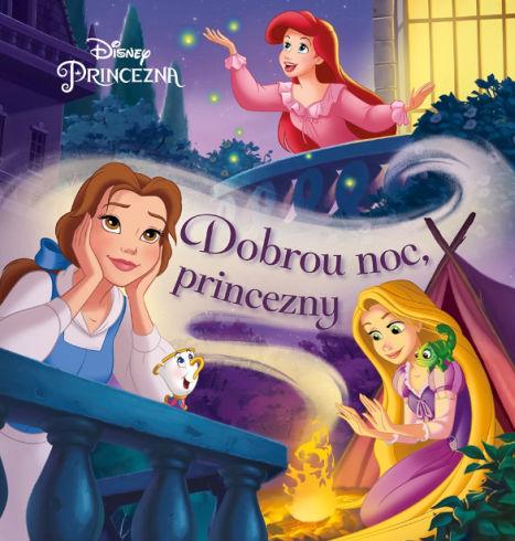 Soutěž o dětskou knížku Princezna - Dobrou noc princezny - www.vasesouteze.cz