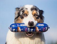 Soutěž o chutné salámky pro psy značky Brit Premium - www.chytrazena.cz