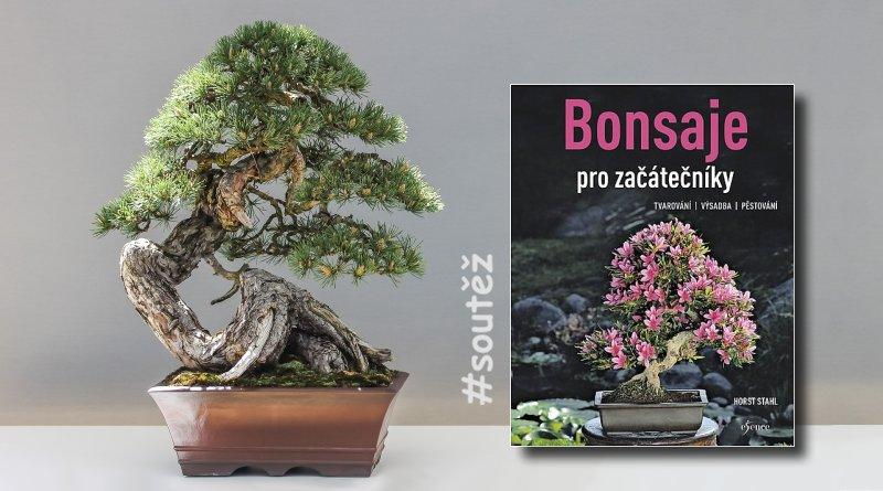 SOUTĚŽ o knihu Bonsaje pro začátečníky - www.chrudimka.cz