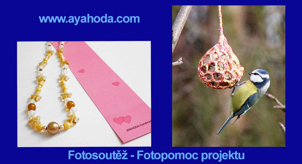 Soutěž  Fotografie  Fotosoutěž  Malí ptáci v přírodě  Fotopomoc. - www.ayahoda.com