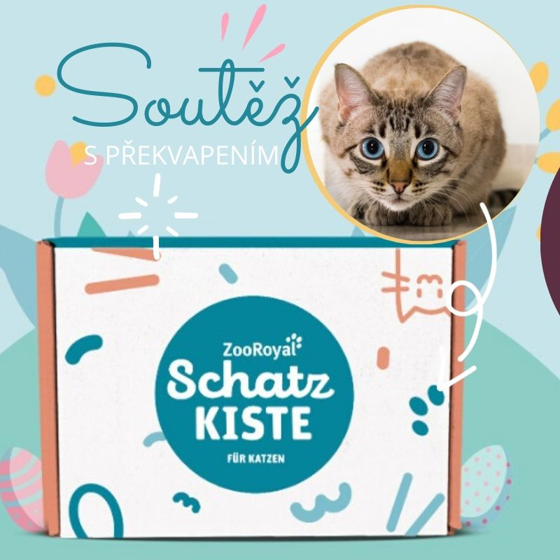 Soutěž o krabici pro kočky s překvapením - www.ukocouradoma.cz
