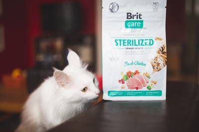 SOUTĚŽ o nová Brit Care Cat krmiva pro kočky - www.zenyprozeny.cz